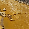 Political Science professor discusses Gold King Mine spill