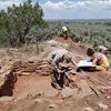 Archaeological Field School on PBS