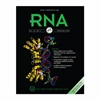 Three students publish research in the journal RNA