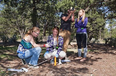 Forensic Sciences minor students collecting data samples at a practice field site