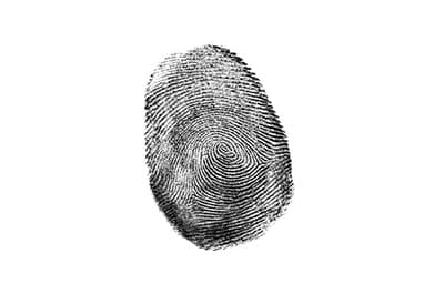 Fingerprint in black ink against a white background representing our Forensic Studies minor