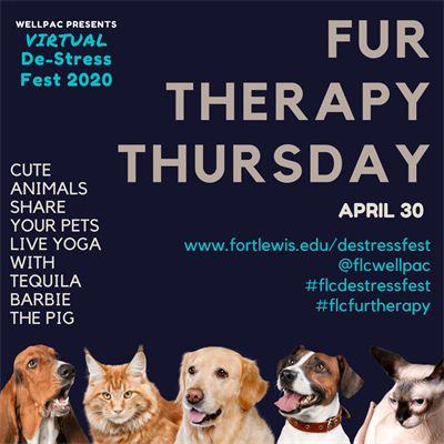 Fur Therapy Thursday