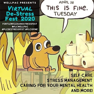This is Fine Tuesday