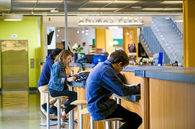 Students sitting at the counter at Animas Perks in the Student Union