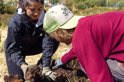 FLC students working on an ecosystem restoration project
