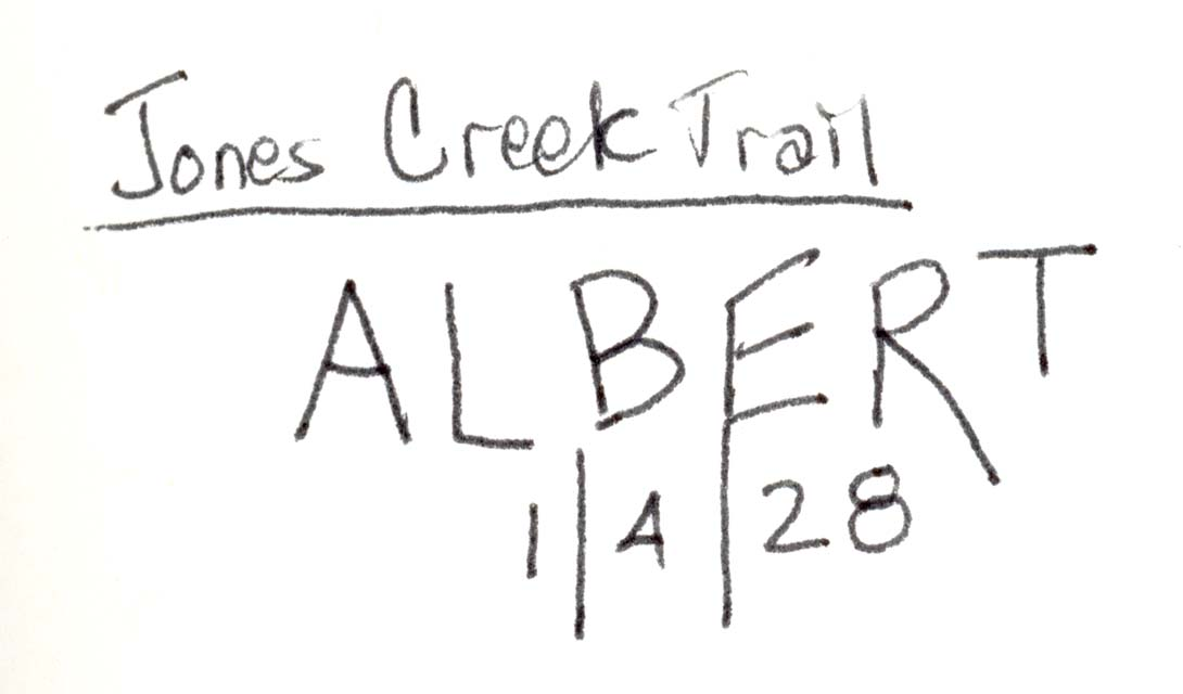 San Juan Mountains arborglyph illustration by Esther Greenfield