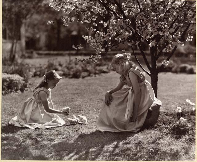 Photoprint by B. J. Ochsner
