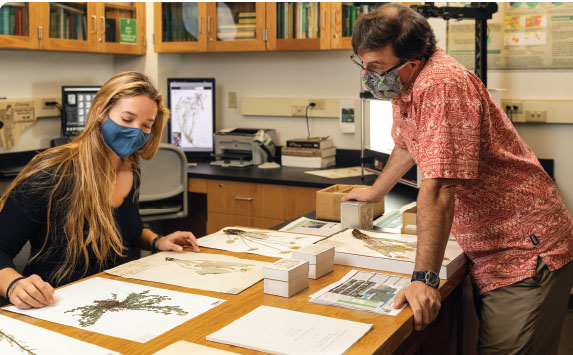 Student working with Professor McCauley in the Herbarium